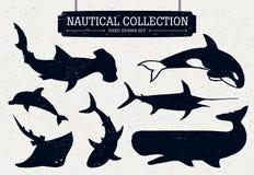 Icone disegnate a mano del pesce dell'oceano messe Fotografie Stock Libere da Diritti