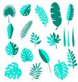 Icone disegnate a mano stabilite di vettore tropicale delle foglie Foglia di palma, foglia della banana Alberi della giungla Illu Fotografia Stock Libera da Diritti