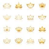Icone dorate di simbolo di Lotus Etichette floreali di vettore per il benessere ind Fotografia Stock