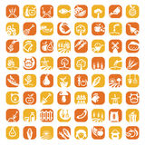 Grande insieme dell'icona dell'azienda agricola di colore Fotografia Stock
