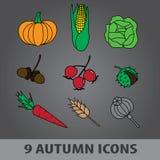 Icone eps10 della frutta di autunno Illustrazione Vettoriale