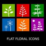 Icone floreali piane Fotografia Stock Libera da Diritti