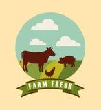 Icone fresche dell'emblema dell'azienda agricola Immagini Stock Libere da Diritti