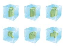 Icone ghiacciate   Fotografie Stock
