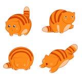Icone grasse del gatto Immagini Stock Libere da Diritti