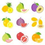 Icone messe, progettazione piana della frutta Fotografia Stock