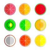 Icone stabilite del mandarino del limone dell'anguria del cantalupo del kiwi della calce del pompelmo arancio della noce di cocco Fotografia Stock Libera da Diritti