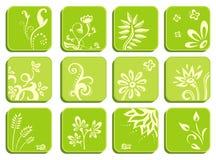 Icone verdi floreali Fotografia Stock Libera da Diritti