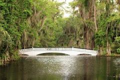 Bridge at Magnolia Plantation in Charleston, SC Stock Photography