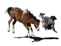 Iconic clipart av en sparka bakut häst- och rodeocowboy stock illustrationer