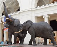 Iconic elefanter Royaltyfri Foto