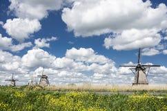 Iconic holländskt landskap Arkivfoto