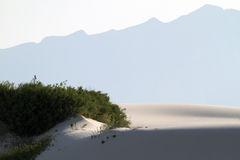 Iconic image from White Sands National Monument Royalty Free Stock Images