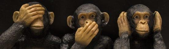 Iconic Monkeys Royalty Free Stock Photo