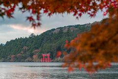 An iconic red gate of Hakone jinja shrine standing in Lake Ashi with blurred red maple leaves stock photos