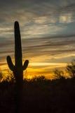 Iconic Southwestern Sunset Royalty Free Stock Images