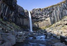 Iconic Svartifoss vattenfall Island Royaltyfria Bilder