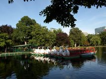 Swan Boats, Boston Public Garden, Boston, Massachusetts, USA Royalty Free Stock Photo