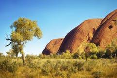 Iconic Uluru in Australia's Outback Stock Image