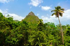 Iconic view of Piton mountains. Iconic view of one of Piton mountains on St Lucia island in Caribbean royalty free stock images