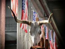 Iconic western bull longhorn skull on USA flags background royalty free stock photo