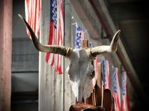 Iconische westelijke stieren longhorn schedel op de vlaggenachtergrond van de V.S. royalty-vrije stock foto
