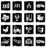 Icono agrícola Foto de archivo