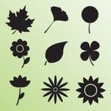 Icono aislado de la hoja y de la flor Fotografía de archivo libre de regalías