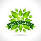 Icono amistoso del sitio web de Eco, Foto de archivo libre de regalías
