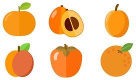 Icono anaranjado de la fruta stock de ilustración