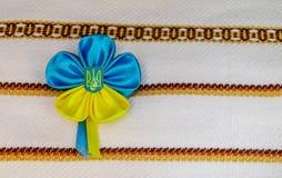 icono Azul-amarillo Foto de archivo