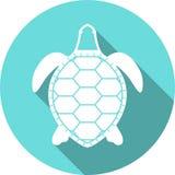Icono blanco del vector de la silueta de la tortuga Fotos de archivo