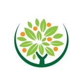 Icono con sabor a fruta del árbol de la hoja Fotografía de archivo libre de regalías