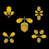 Icono de la bellota Ilustración del vector foto de archivo libre de regalías