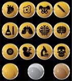 Icono de la biología fijado - botones del oro Fotografía de archivo