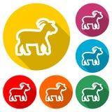 Icono de la cabra, icono del color con la sombra larga Imágenes de archivo libres de regalías