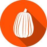 Icono de la calabaza Imagenes de archivo