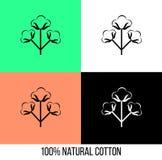 Icono de la flor del algodón en diversos colores Foto de archivo