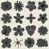 Icono de la flora del pétalo de la flor Imagen de archivo libre de regalías