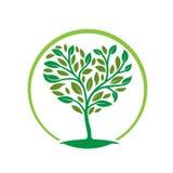 Icono de la hoja del árbol del hogar Imagen de archivo libre de regalías