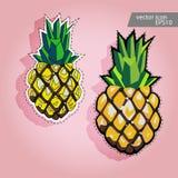Icono de la piña Etiqueta del vector de la piña Foto de archivo libre de regalías
