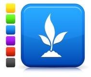 Icono de la planta en la colección cuadrada del botón de Internet Foto de archivo