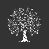 Icono de la silueta del olivo aislado en fondo oscuro Fotografía de archivo
