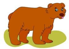 Icono de la web del oso marrón El ejemplo del vector, un oso salvaje grande está sonriendo fotos de archivo
