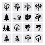 Icono de los árboles stock de ilustración
