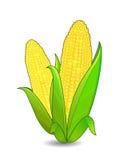 Icono de los oídos de maíz Imágenes de archivo libres de regalías