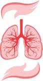 Icono de los pulmones y de las manos Fotos de archivo libres de regalías
