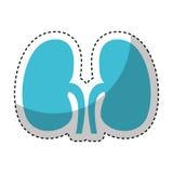 Icono de los riñones del órgano humano Imagenes de archivo