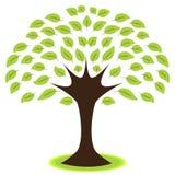 Icono del árbol Imágenes de archivo libres de regalías