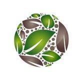 Icono del árbol de la hoja de la salud Foto de archivo